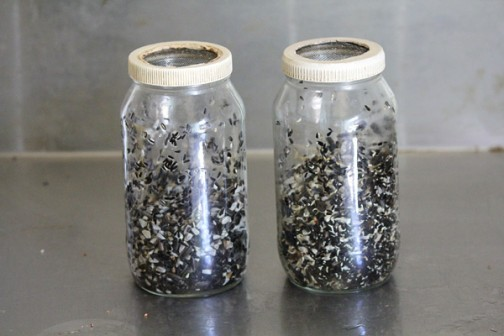 These are the jars I use and will handle one cup of dry seed